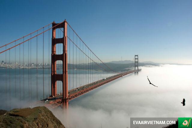 Đặt mua vé máy bay đi San Francisco hãng EVA Air