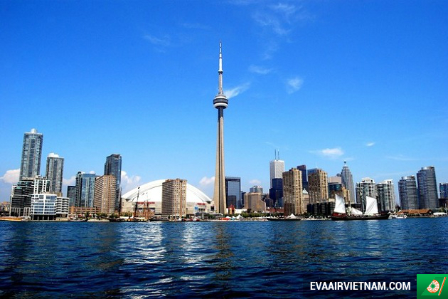 ve may bay gia re di toronto