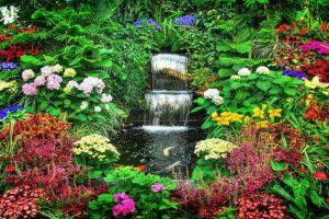 Chiêm ngưỡng các vườn hoa đẹp nhất nước Mỹ